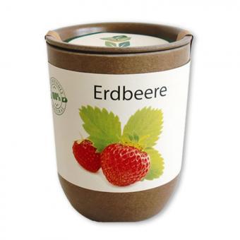 ecocan - Erdbeere - Hundert kleine Freuden