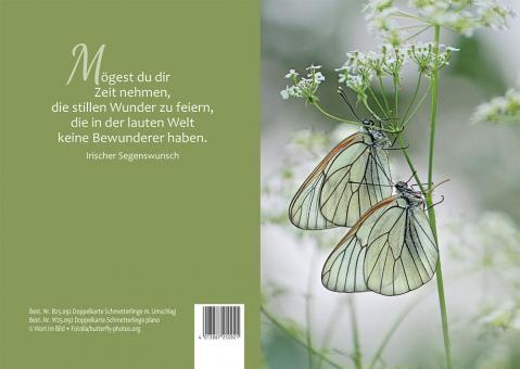 Doppelkarte plano - Schmetterlinge - Irischer Segenswunsch