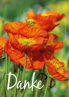 Postkarte Rückseite Blanko - Danke