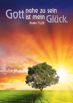 Postkarte A6 - Gott nahe zu sein ist mein Glück - Baum